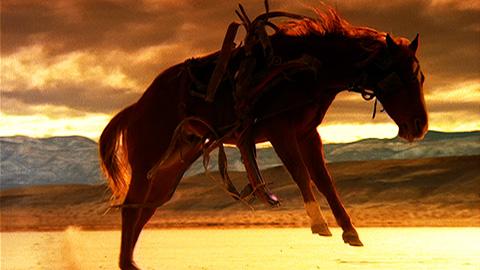Aegon – Horses